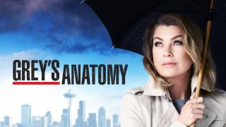 Grey's Anatomy - Silberflut
