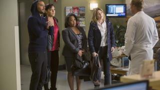 Grey's Anatomy - Staffel 12 Episode 13: Das Dream-Team