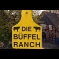 Büffelranch
