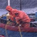Die Extrem-Fischer