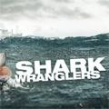 Shark Wranglers