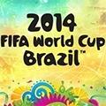 WM - Brasilien
